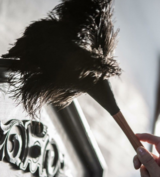 a hand holding an ostrich feather duster cleaning some home decor